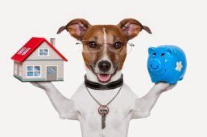 Property or Savings